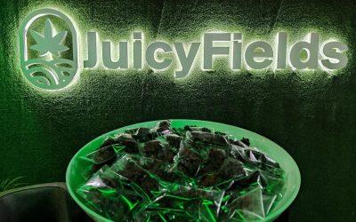 JF medizinisches Cannabis2021-10-22 10.26.07