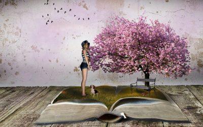 Bild von Mystic Art Design auf Pixabay